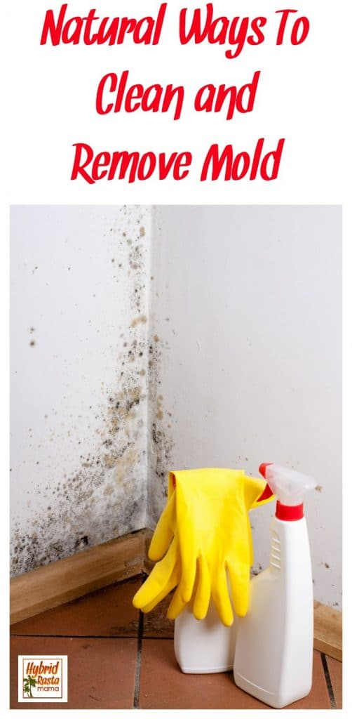 Do you have surface mold problems? Looking for natural ways to clean mold and remove mold? Here are 6 ways you can clean mold naturally from HybridRastaMama.com.
