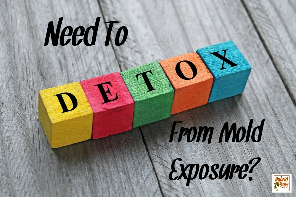 Need To Detox From Mold Exposure? Here's How I Did It.