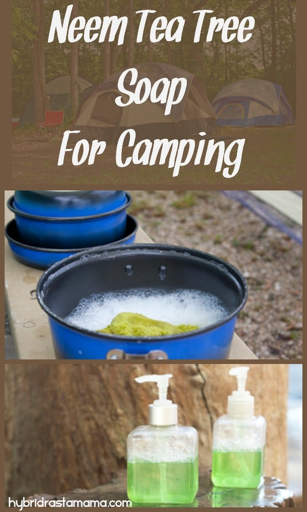 Dirty dishes and two bottles of neem tea soap for camping