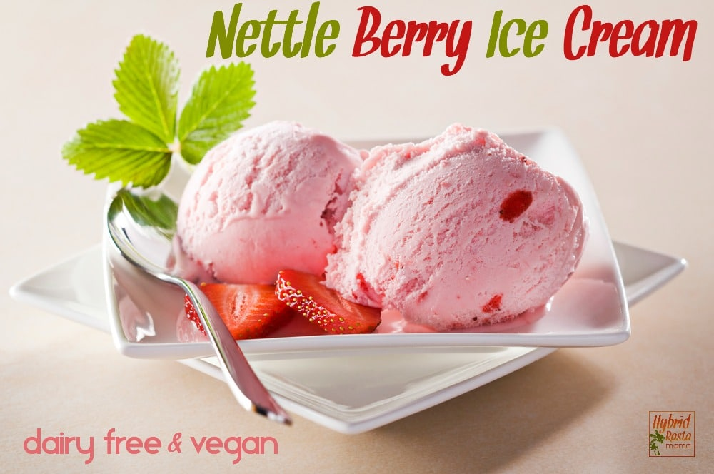 A bowl of dairy free nettle berry ice cream