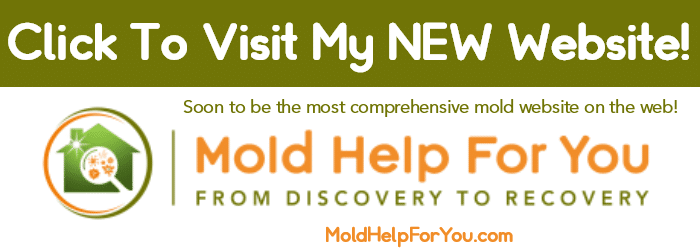 Mold Help For You Banner