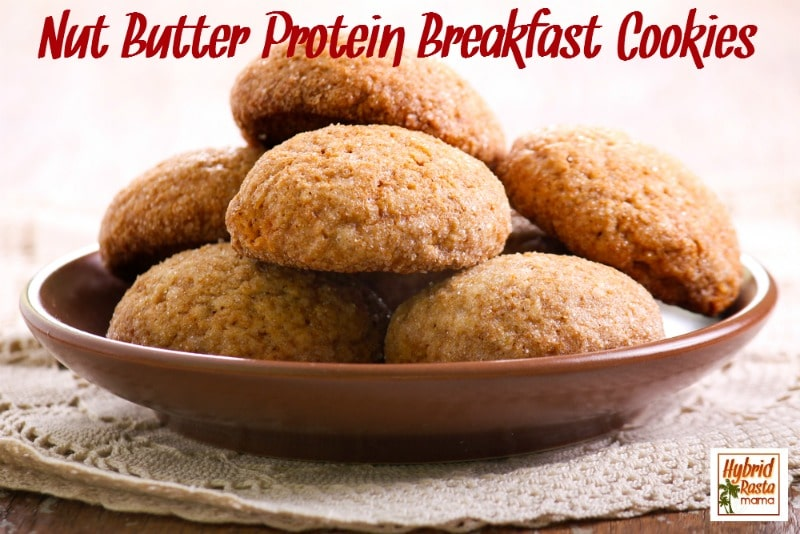 Nut Butter Protein Breakfast Cookie Recipe