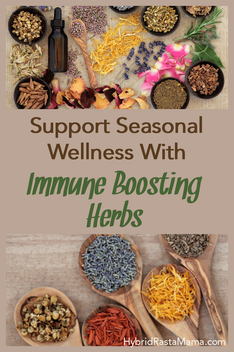 Various immune boosting herbs to support seasonal wellness