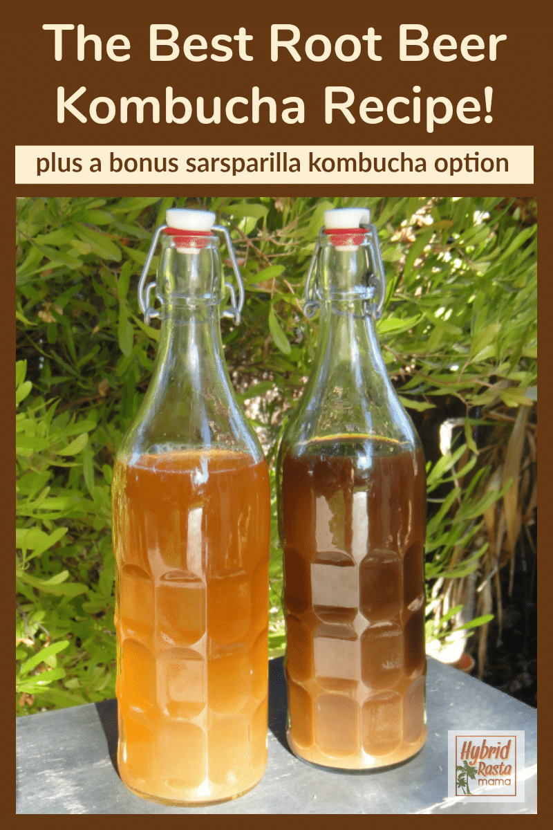 A glass grolsch bottle of root beer kombucha next to a bottle of sarsaparilla kombucha