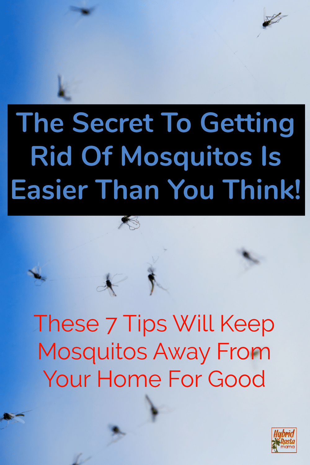 "a sky full of mosquitos with the words ""the secret to getting rid of mosquitos is easier than you think."""