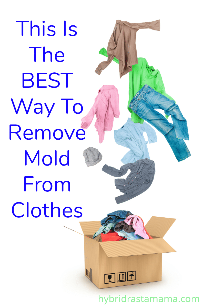 "A pile of clothes that have been stored in a box and have gotten moldy. A caption says ""This is the best way to remove mold from clothes."""