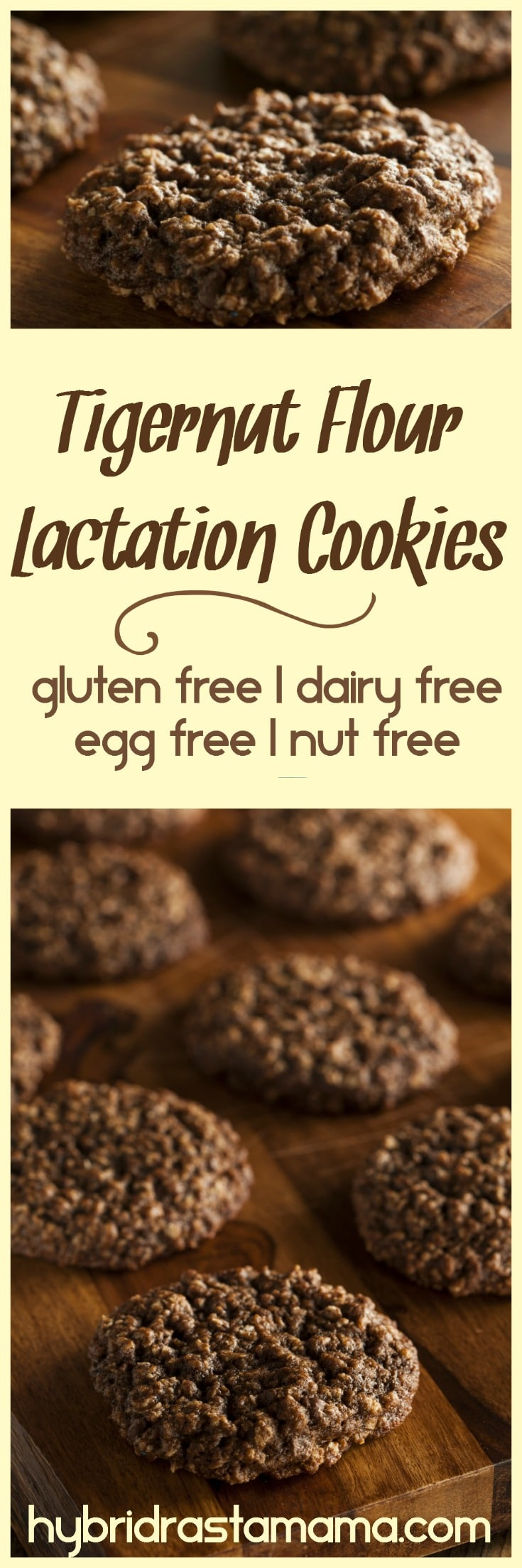 These gluten free, dairy free, egg free, nut free, soy free lactation cookies are the nourishing and delicious answer to low milk supply. Made without junky ingredients, you don't have to feel guilty about eating all the cookies needed to boost that milk production! From HybridRastaMama.com