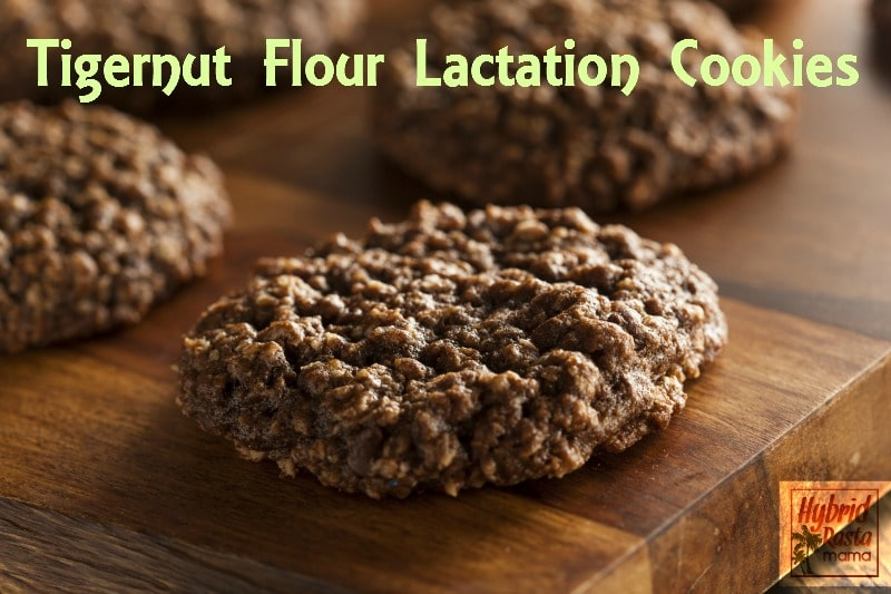 Tigetnut Flour Lactation Cookies from HybridRastaMama.com