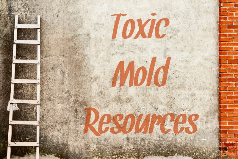 A comprehensive list of toxic mold resources including testing options, scientific articles, filtration products, mold removal, and more from HybridRastaMama.com
