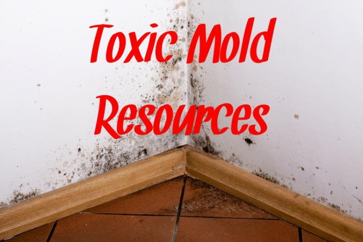 Black mold in the corner of a wall with toxic mold resources written in red