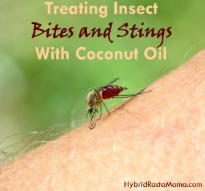 Treating Insect Bites and Stings Naturally With Coconut Oil from HybridRastaMama.com