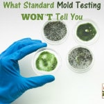 What Standard Mold Testing WON'T Tell You