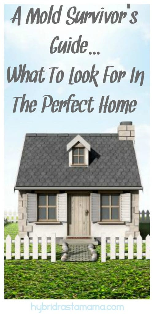 Are you looking for the best place to go after leaving your mold infested home? In this post, learn what to look for in the perfect home and how to ensure a mold free living environment so you can heal.