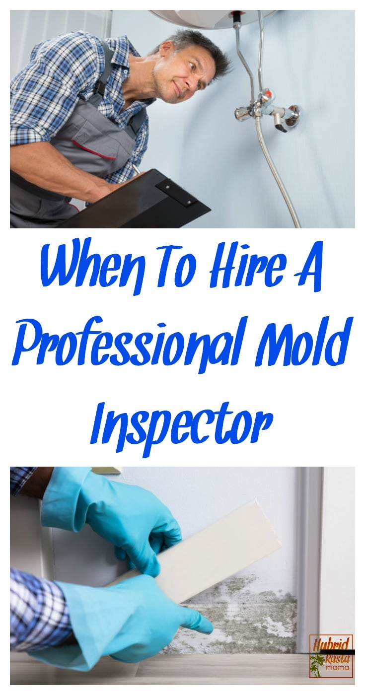 If you have mold or suspect mold, it might be difficult to decide if you need to hire a mold inspector. Today, I will give you some tips on when to consider bringing in a mold inspector, questions to ask before hiring one, titles mold inspectors go by, as well as a list of trusted professionals that came highly recommended by the world renowned toxicologist I hired. From HybridRastaMama.com. #mold #moldtesting #moldinspection #homeinspection