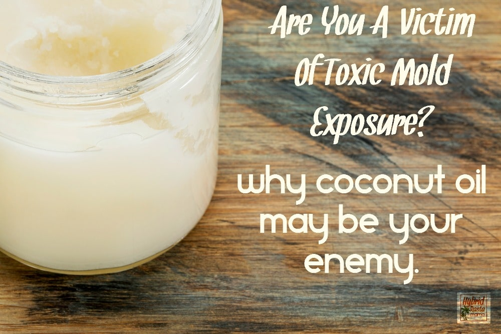 Are you a victim of mold exposure? Do you consume and use a lot of coconut oil? Find out why coconut oil may be making you sick and what you can do about it. From HybridRastaMama.com.