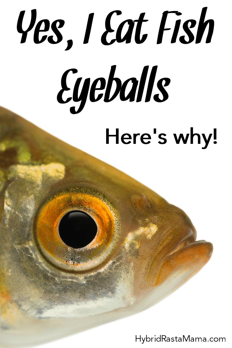 A close up of a fish eyeball